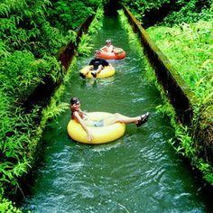Sugar Plantation - Hawaii