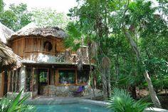 CASA DE CAMPO EN LA SELVA DE SOLFERINO. QUINTANA ROO  Ven a conocer y a disfrutar de Solferino. Alójate en la casa de campo. Equipada con 3 habitaciones, baños, cocina, estancia, sala, piscina, senderos y mucha naturaleza. Ubicada a 30 min antes de llegar a Holbox. INFO aldeamaya@hotmail.com TELF/WHATSAPP 9992163155 #AldeaMaya #Cupaima #Solferino #Hobox #CasadeCampo #TravelYucatan #TravelMexico INTEGRATE A www.fb.com/AldeasMaya  RESERVA CON ANTICIPACIÓN