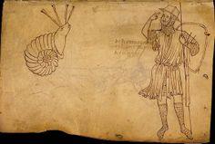 folio-03-colimacon-guerrier-ou-voyageur.jpg (568×385) villard de honnecourt