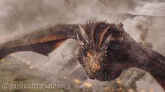 "Polubienia: 2,558, komentarze: 14 – Game Of Thrones (@gameofthroness._) na Instagramie: ""Look how beautiful he is """