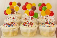 """Photo 1 of 17: Circus Theme / Birthday """"Imi and Josh's Circus Party"""" 
