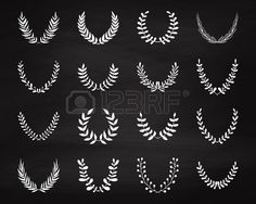 Set of hand drawn laurel wreaths on the chalkboard. Chalk elements for decor. Floral branches. Award, winning. Silhouette frames. Vector illustration.