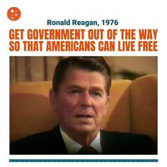 Political Memes, Politics, Trump Video, Tax Haven, Republican Presidents, Vote Trump, Free Mind, Real Estate Information, Get Shot