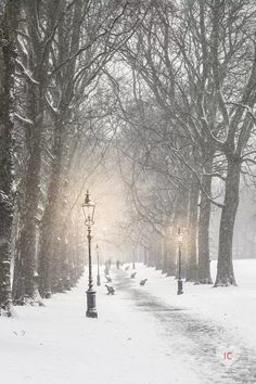 Snow In London - Canvas Print