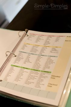 Organization Binders with PDF files for the future