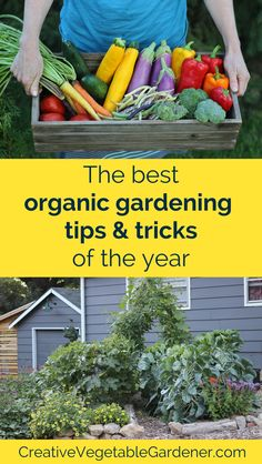 Delve deeper into your favorite hobby and learn how to grow a better garden with these popular organic gardening tips from the blog.