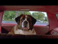 [Full HD Movie] Beethoven [1992] - YouTube