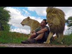 Lion Whisperer's (Kevin Richardson) bond with Lions that he has raised since they were cubs. They can be adorable mischievous and sometimes moody.but above all they (Lions and Kevin) all love each other. Beautiful Creatures, Animals Beautiful, Cute Animals, Between The Lions, Kevin Richardson, All Gods Creatures, African Safari, Big Cats, Habitats