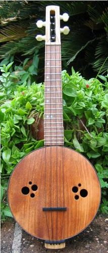 Interesting link on site that illustrates how to make your own ukulele or banjo uke from cigar boxes and old cookie tins.