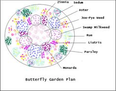 monarch butterfly garden design - Great Home Design Butterfly Garden Plants, Flower Garden Plans, Garden Design Plans, Garden Ideas, Flower Gardening, Garden Tips, Patio Design, Swamp Milkweed, Vegetable Garden Planning