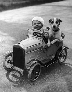 Vintage photo, toddler with dog in play car.