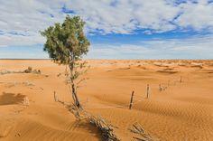Południe Tunezji - kraina pełna filmowych krajobrazów