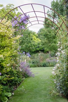 Garden Gates, Walkway, Arches, Garden Plants, Planting, Garden Ideas, Outdoor Structures, Bows, Runway