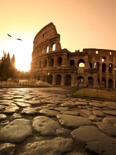 Colosseum and Via Sacra, sunrise, Rome, Italy they could flood it for sea battles to entertain the mob.of ancient Rome. Places Around The World, Oh The Places You'll Go, Places To Travel, Travel Destinations, Places To Visit, Travel Tips, Travel Guides, Dream Vacations, Vacation Spots