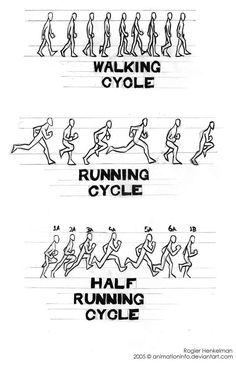 Walk-Run-FastRun cycles by #animationinfo on deviantART