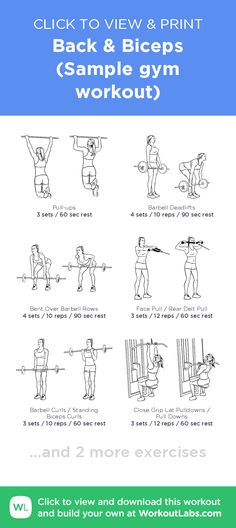 And print this illustrated exercise plan created with ежене Shoulder And Bicep Workout, Bicep And Tricep Workout, Bicep Gym, Back And Bis, Gym Routine, Exercise Routines, Back Exercises, Stretches, Gym Workouts
