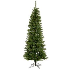 This Christmas season decorate your home with the beautiful Vickerman Salem Pencil Pine Green Artificial Christmas Tree with Stand. This pencil-shaped Christmas tree features upward-sloping metal hinged branches that are covered with lush . Christmas Tree Clear Lights, Pencil Christmas Tree, Green Christmas, Christmas Decorations, Christmas Gifts, Merry Christmas, Christmas Time, Christmas Ideas, Rustic Christmas