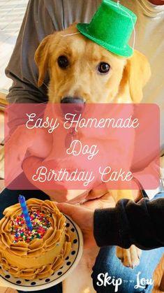 Baby Carrot Recipes, Baby Food Recipes, Cooking Recipes, Dog Birthday, Birthday Cake, Puppy Treats, Homemade Dog, Diy Stuffed Animals, Diy For Kids
