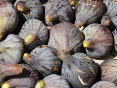 There are many associated health benefits of figs, which make them a very attractive plant. The significant fiber content in figs makes them a wonderful fruit to improve one's digestive health. Fig Nutrition, Cottage Cheese Nutrition, Quest Nutrition, Nutrition Chart, Nutrition Program, Health Benefits Of Figs, Nutritional Value Of Eggs, What Is Health, Fig Fruit