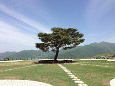 Time capsule Park. Joengsun. Gangwondo