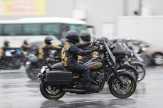 #zipangus #blackandgold #motorcycle #syndicate #ms #harley #National #TOKYO #2017 #sylz #fxdls #clubbike