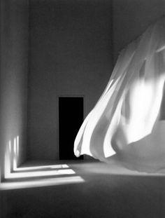 Mayumi Terada, blowing drapes and shadows