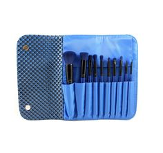 I want these to use with my eye shadow pallets  SET 695 - 10 PIECE 3D PATTERN NAVY BLUE SET