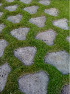 Grass Inspiration – It's not all bad! —studio g garden design ad ...