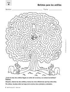 Fichas para desarrollo de la inteligencia 4 º Primaria.