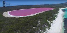 Розовое озеро Хиллер в Австралии долгие годы волновало учёных из-за своего необычного розового цвета. Нет, это не токсичные отходы, такой цвет получен..