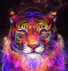 "Threyda | Art & Goods | ""Late Night tiger sketch"" Monique Munoz |  #vibes #indigo #moonchild#consciousness #kundalini #spaceporn #synchronicity #alchemy #highervibes #chakra #goddess #higherself #moonphases #om #divine #thirdeye #threyda #peace #awakening #crystals #love #art #hippie #universe #cosmos #zen #psychedelic #goodvibes #magic #denver #colorado #trippy #painting #sculpture #digitalart #visionaryart #threyda"