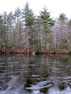 View from Echo Point on the Cove Trail along Wincheck Pond at Camp #Yawgoog.  A 2014 image by David R. Brierley.