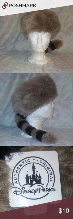 Disney Park's Raccoon hat Great for your next trip to Disney Disney  Accessories Hats