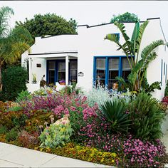 Low water landscaping: succulents & drought tolerant perennials/Sunset Magazine (love this front yard! Low Water Landscaping, Drought Resistant Landscaping, Drought Tolerant Landscape, Succulent Landscaping, Low Maintenance Landscaping, Garden Landscaping, Landscaping Software, California Front Yard Landscaping Ideas, Xeriscaping