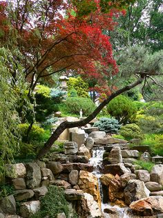 Japanese Garden at Hillwood Museum Washington, DC