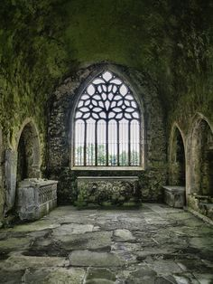 https://flic.kr/p/PGtHAL | The Chancel | Kilcooly Abbey, County Tipperary, Ireland.  The chancel contains two stone tombs and a stone altar. One of these tombs is that of the knight Piers Fitz Oge Butler. His tomb records his death as taking place in 1526 and has some beautiful carvings of 10 apostles on the side of it carved by Rory O Tunney who is also noted for his work in Jerpoint Abbey.  #Architecture #Colour #Photography  www.richardsugden.com  © Richard Sugden 2016 All rights…
