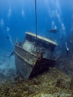 Flickr Underwater Shipwreck, Underwater Photos, Underwater Photography, Abandoned Ships, Abandoned Places, Photos Sous-marines, Ghost Ship, Old Boats, Roatan