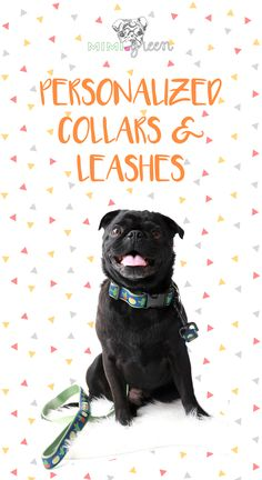 Affordable Dog Boarding Near Me Refferal: 6624280954 Baby Puppies, Pet Puppy, Dogs And Puppies, Doggies, Marley Dog, Dog Love, Puppy Love, Foods Bad For Dogs, Animals And Pets