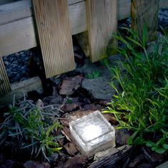 Light up your garden path or lawn edge with ease using this #solar garden path #light.
