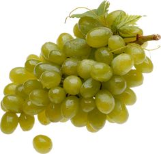 This high quality free PNG image without any background is about grape, berry, grapes, fruit, green grapes and food. Food Png, Episode Backgrounds, Magazine Collage, Strawberry Milk, Green Grapes, Illustrator Tutorials, Aesthetic Pictures, Decoration, Pink And Green