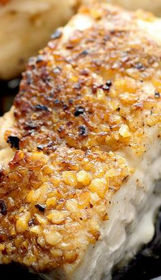 Encrusted Halibut Recipe ~ a deliciously simple, yet impressive way to prepare the steak of seafood.Pecan Encrusted Halibut Recipe ~ a deliciously simple, yet impressive way to prepare the steak of seafood. Seafood Recipes, Paleo Recipes, Great Recipes, Dinner Recipes, Cooking Recipes, Favorite Recipes, Halibut Steak Recipe, Grilled Halibut Recipes, Entree Recipes
