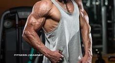 Die Prinzipien des Bodybuildings  - Muskelaufbau