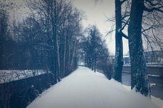 Winter Wunder Land