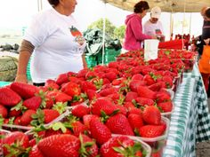 Fresh Strawberries at the Spring Strawberry Festival in #Mgarr, Malta.