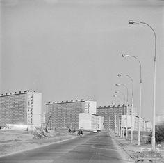 Osiedle Strusia, lata 60-te.