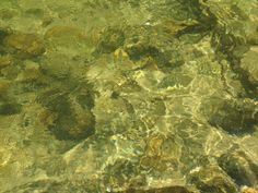 Rio Bonito river with his clear water