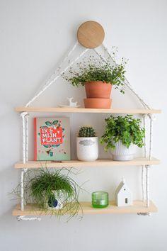 Urban Jungle Bloggers: Plantshelfie 2 by @wimke
