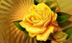 Flowers Pictures Roses Yellow ... Click Visit for more Pics