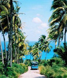 Countryside, Saint Michael, Barbados