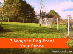 7 ways to dog proof your fence (and more!) not that my Murphy would ever try to leave. :)